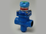 STEAM PRESSURE REDUCER BRV2S SPIRAX